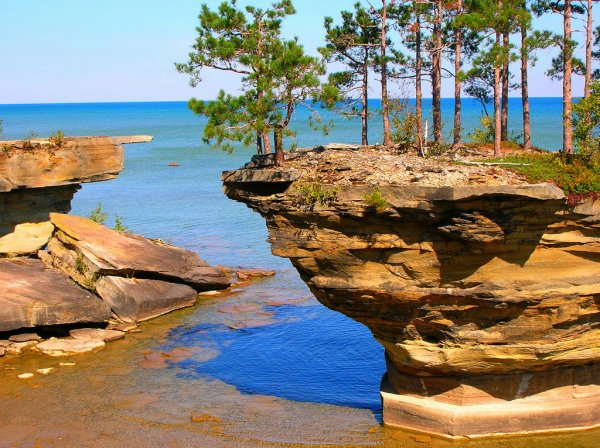 Turnip Rock � ��������, ������������� ��� ����� (6 ����)