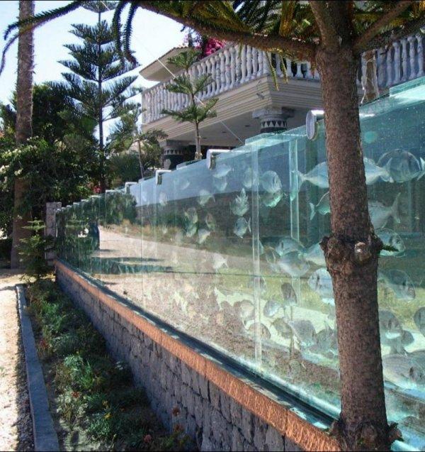 Baš neobično 1374073586_zabor-akvarium-1