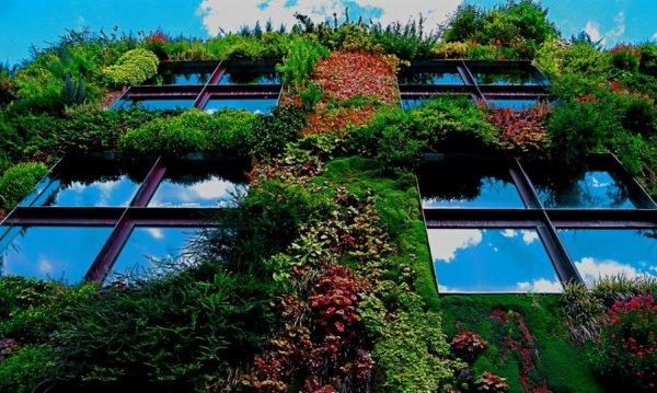 Ogórd Vertical Garden, Paryż, Francja