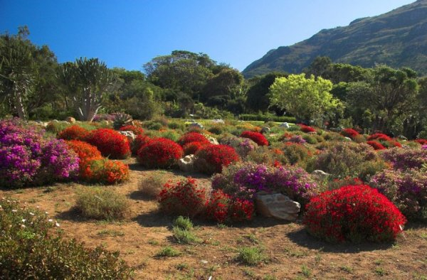 TOP-25: najpiękniejsze ogrody świata