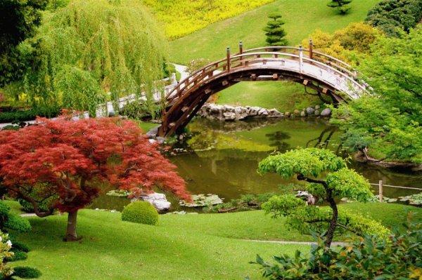 Ogród botaniczny Huntington Botanical Gardens, San Marino, Kalifornia, USA