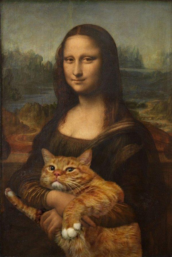 фото кошки мару