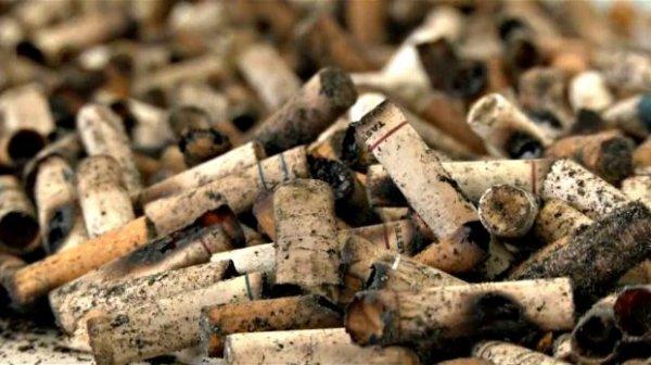В Бразилии делают бумагу из сигаретных окурков